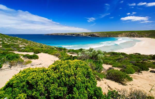 kangaroo_island1